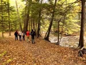 Walking the NC mountain to sea trail