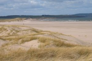 sand dunes and links golf